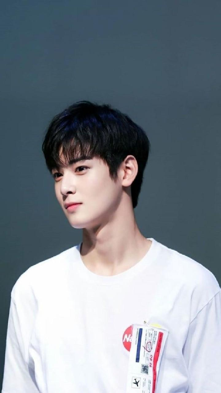 Cha Eun Woo Wallpapers Hd For Android Apk Download