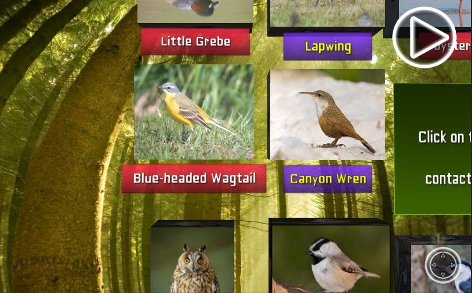 Bird Sound and Name 3D free for Android - APK Download