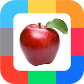 Flashcards Berries and Fruits icon
