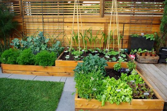 Garden Ideas apk screenshot