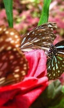 Butterfly Gorge Hainan Jigsaw apk screenshot