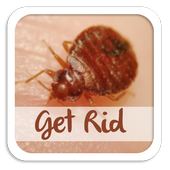 How To Get Rid Of Bed Bugs icon