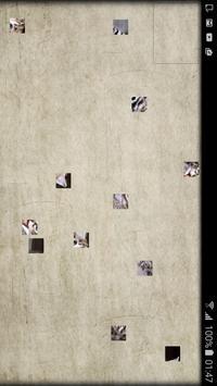PetroPoz Puzzle 6 poster