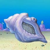 神奇海螺 icon