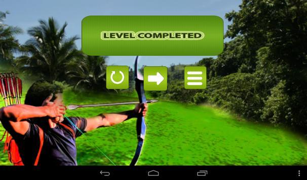 Archery Master 3D Advance apk screenshot