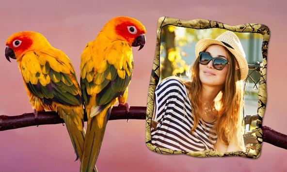 Birds Photo Frames APK Download - Free Photography APP for Android ...