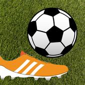 Brazil Goal Challenge - Soccer icon