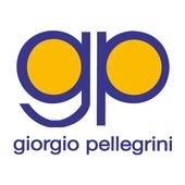 Giorgio Pellegrini icon