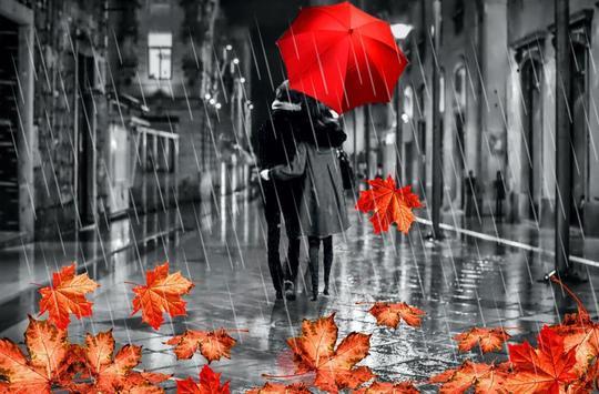 Autumn Love live wallpaper screenshot 6