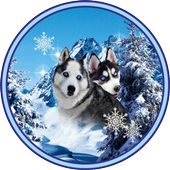 Husky Best Dogs icon