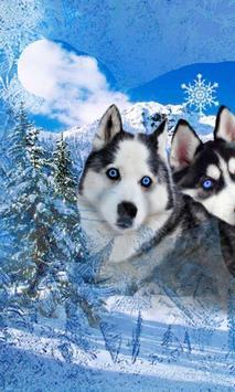 Husky Best Dogs screenshot 1