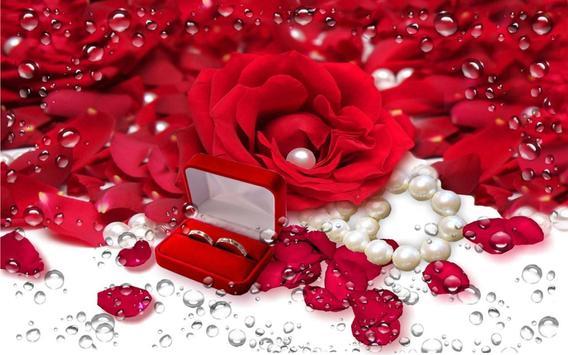 Romantic Love live wallpaper apk screenshot