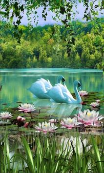 Swans and Lilies LWP poster