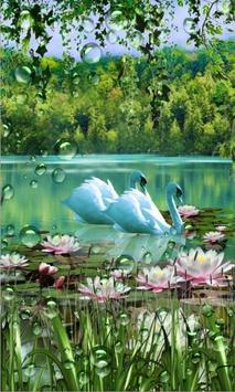 Swans and Lilies LWP screenshot 1