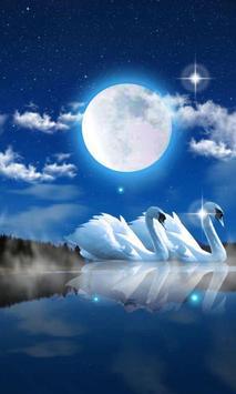 Swans Night poster