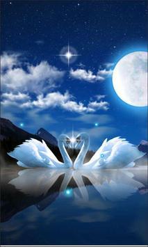 Swans Night screenshot 1