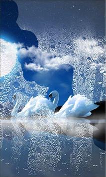 Swans Night screenshot 2