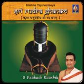 Sri Rudra Ghanam(offline) icon