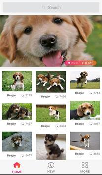 Lovely Dog WallPaper screenshot 1