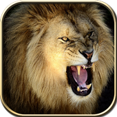 Wild Lion Hunt 2016 icon
