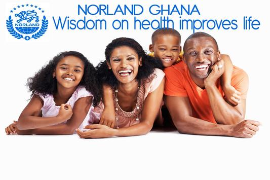 Norland Ghana screenshot 4