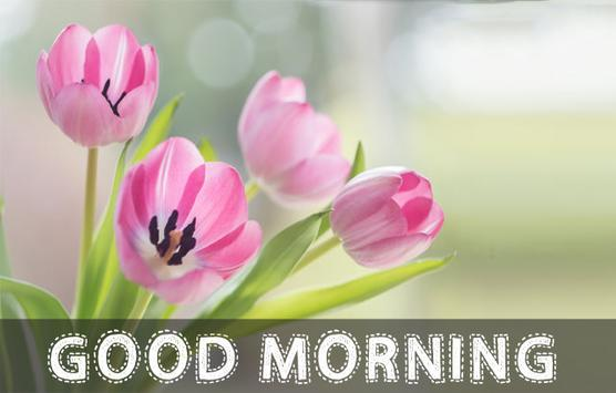 Good morning greeting images3d images for android apk download good morning greeting images3d images screenshot 4 m4hsunfo
