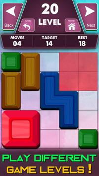Block Puzzles screenshot 12