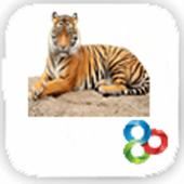 Go Launcher Tiger Theme icon