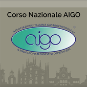 AIGO FAST icon