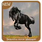 Beautiful Horse Wallpaper icon