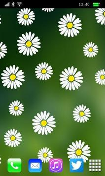 Camomiles Flowers LWP poster
