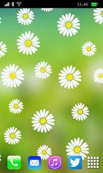 Camomiles Flowers LWP apk screenshot