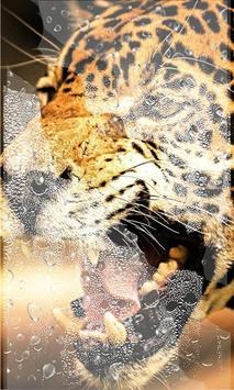 Jaguars Tropical Forest LWP screenshot 2