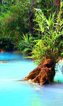 Jungle Lake Live Wallpaper poster