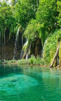 Jungle Lake Live Wallpaper apk screenshot