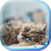 Small Kittiens live wallpaper icon