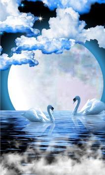 Swans Moon Night LWP poster