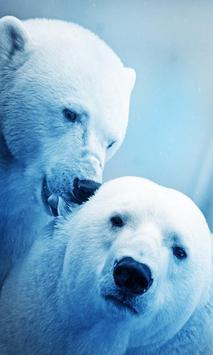 White Bear live wallpaper poster