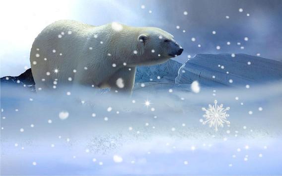 White Bear live wallpaper apk screenshot