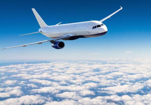 Air airliner puzzle screenshot 5