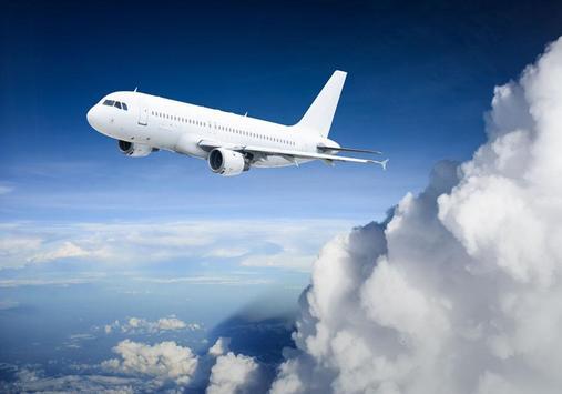 Air airliner puzzle screenshot 7