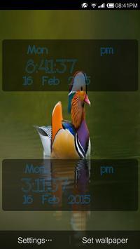 Birds Digital Clock apk screenshot