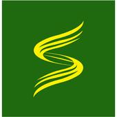 S310 icon