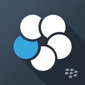 BlackBerry Work icon