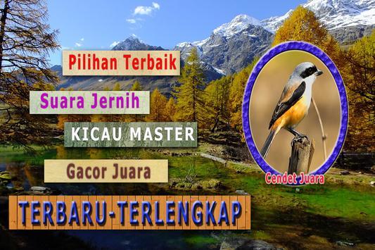 Kicau Cendet Juara MP3 apk screenshot