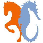 AMTUNA CECYL icon