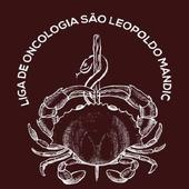 LAONCO - SLM icon