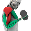 MuscleMatics ikona
