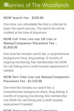 NOW Nannies poster