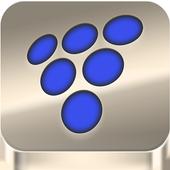 Vineyard App icon